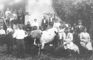 vaca-mezclada-fotos-historicas-numero-2-1993